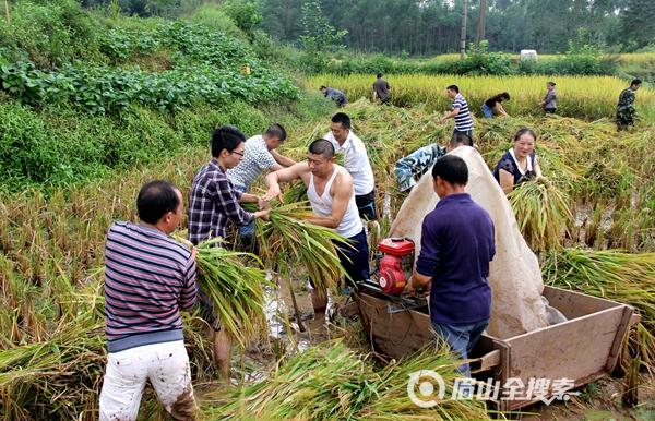 凤陵乡:一家有难众人帮 助人为乐情意深