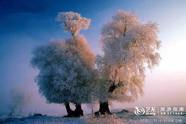 旅游资讯 > 列表  景区地址: 吉林省吉林市龙潭区乌拉街镇雾凇岛 景区